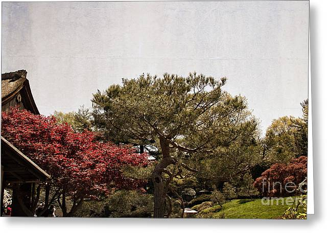 Silk Screen Greeting Cards - Gardens of a Japanese Tea House Greeting Card by Tom Gari Gallery-Three-Photography