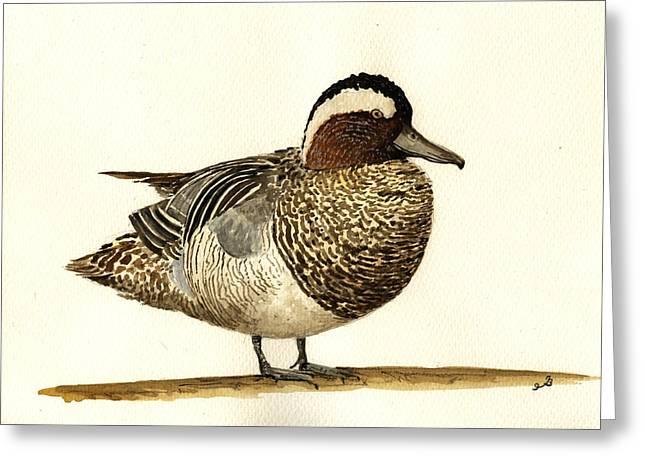Garganey Duck Greeting Card by Juan  Bosco