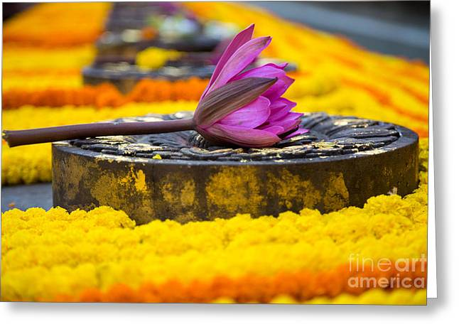 Buddhism Greeting Cards - Garland of Flower Offerings Close Up Greeting Card by Mindah-Lee Kumar