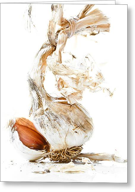 Cloves Greeting Cards - Garlic Greeting Card by Constance Fein Harding