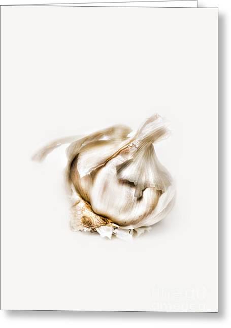 Close Up Photography Greeting Cards - Garlic Greeting Card by HD Connelly