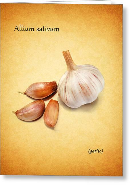 Garlic Greeting Cards - Garlic Greeting Card by Mark Rogan