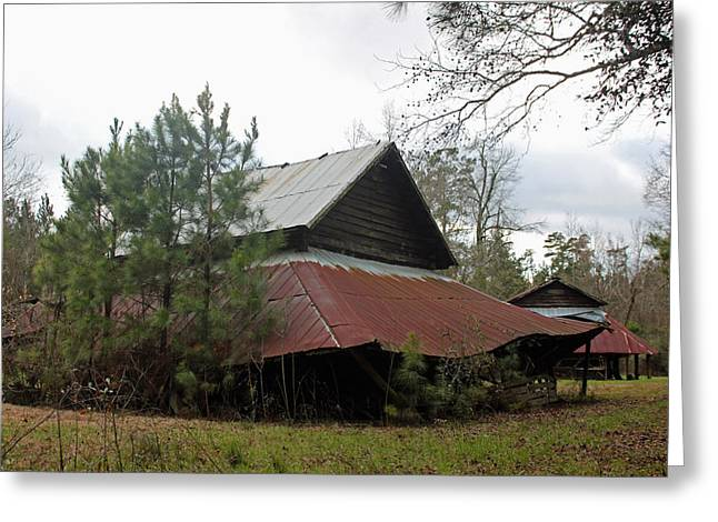 Red Roofed Barn Greeting Cards - Gaskins Family Barn Series II Greeting Card by Suzanne Gaff