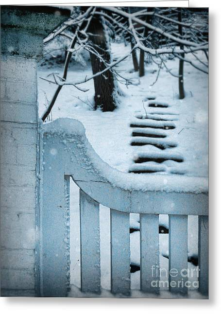 Wooden Stairs Greeting Cards - Gate and Steps in Snow Greeting Card by Jill Battaglia