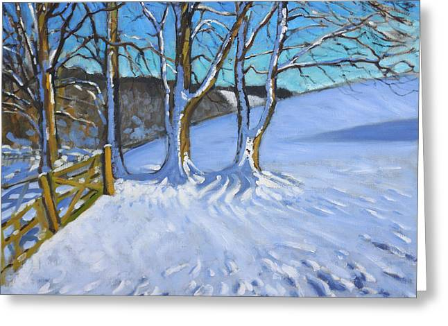 Wintry Greeting Cards - Gate and Trees Winter Dam Lane Derbyshire Greeting Card by Andrew Macara
