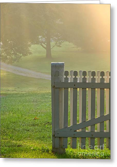 Haze Greeting Cards - Gate in Morning Fog Greeting Card by Olivier Le Queinec