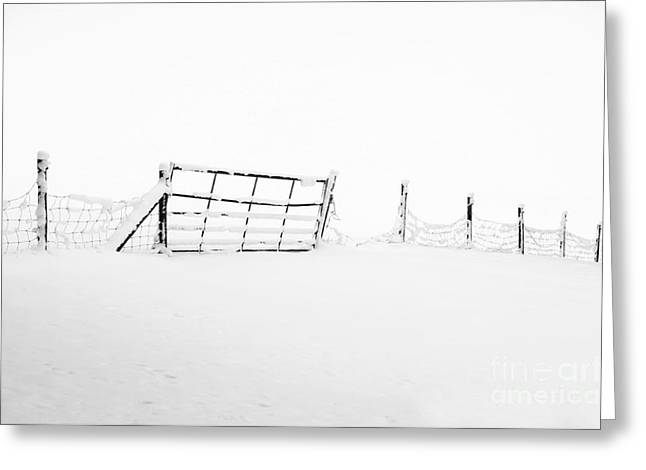 Wintry Photographs Greeting Cards - Gate in Snow Greeting Card by Anne Gilbert
