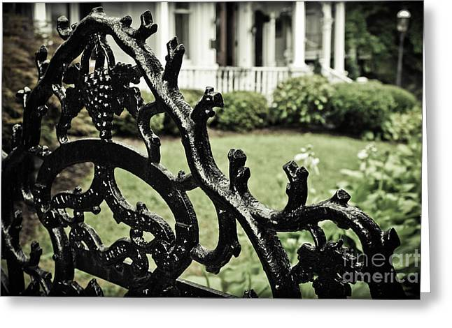 Wrought Iron Gate Greeting Cards - Gated Greeting Card by Colleen Kammerer