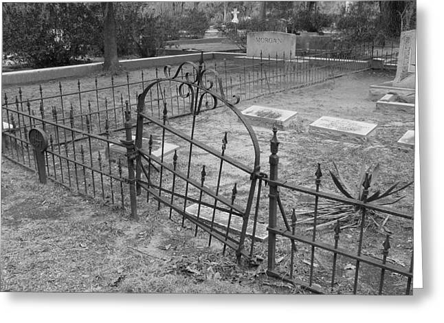 Headstones Greeting Cards - Gated Community in Black and White Greeting Card by Suzanne Gaff