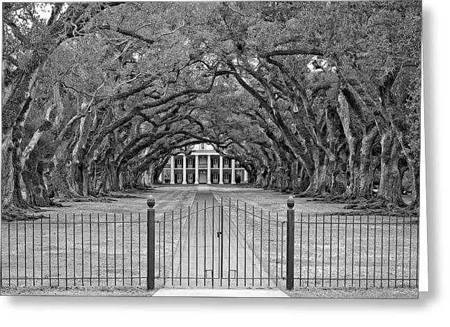 Slaves Greeting Cards - Gateway to the Old South monochrome Greeting Card by Steve Harrington