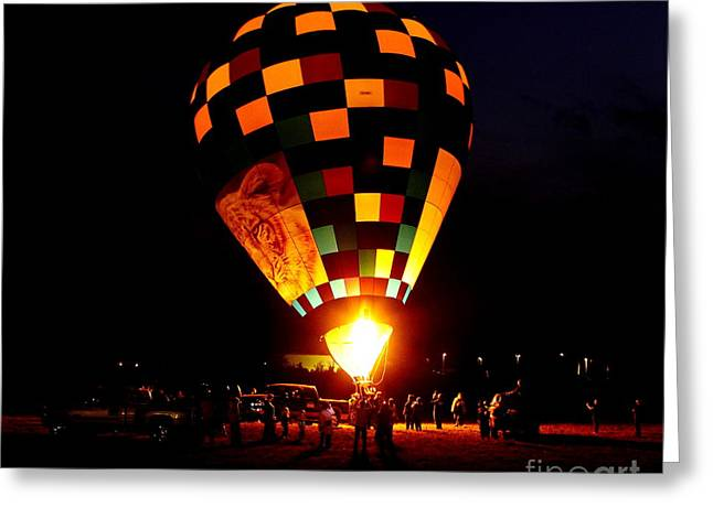 Flicker Greeting Cards - Gathering For Night Glow Greeting Card by Robert Frederick