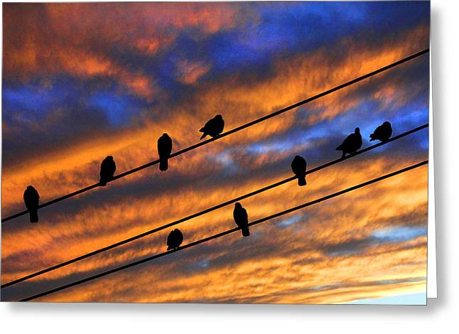 Bird Congregation Greeting Cards - Gathering Greeting Card by Mike Flynn