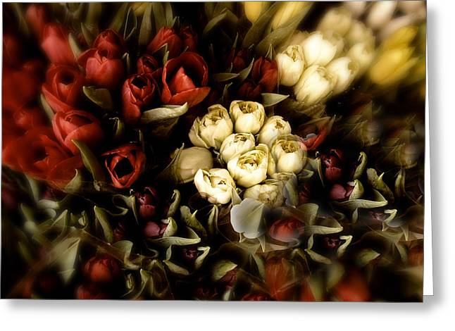 Rich Color Greeting Cards - Gathering of Tulips Greeting Card by Jessica Jenney
