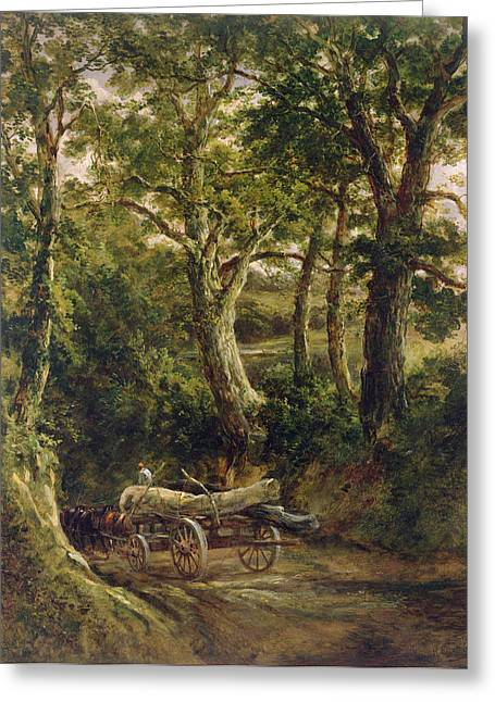 Horse And Cart Photographs Greeting Cards - Gathering Timber Oil On Canvas Greeting Card by Henry Earp