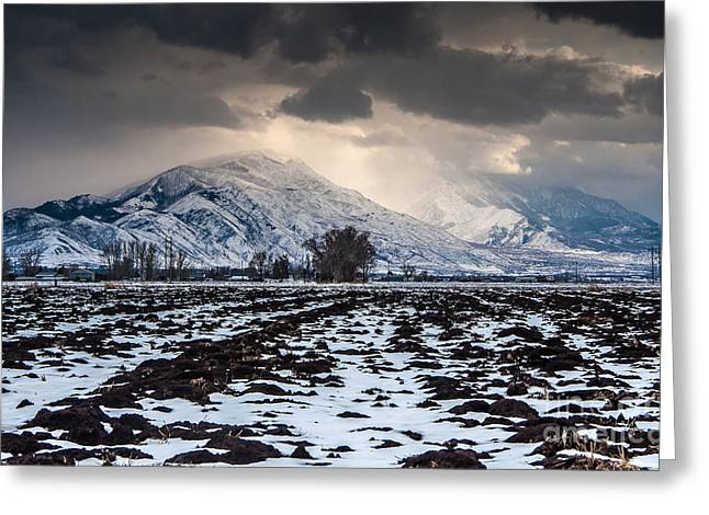 Snowy Evening Greeting Cards - Gathering Winter Storm - Utah Valley Greeting Card by Gary Whitton