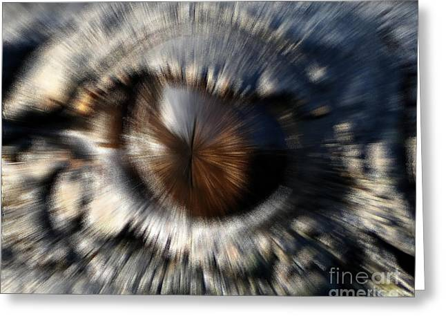 Al Powell Photography Usa Greeting Cards - Gator Eye - Digital Art  Greeting Card by Al Powell Photography USA