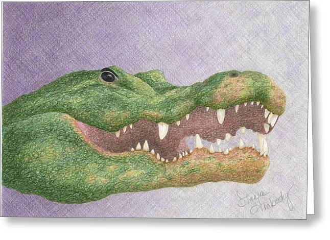Florida Gators Drawings Greeting Cards - Gator Grin Greeting Card by Diana Hrabosky
