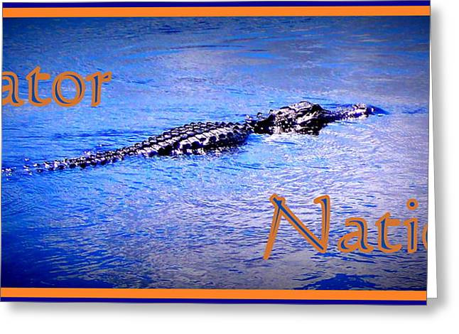 Florida Gators Digital Greeting Cards - Gator Nation Greeting Card by Sheri McLeroy