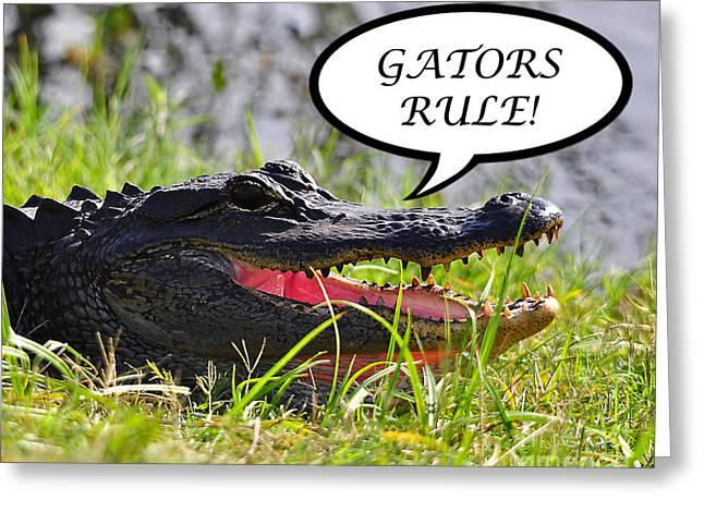 American Alligator Greeting Cards - GATORS RULE Greeting Card Greeting Card by Al Powell Photography USA