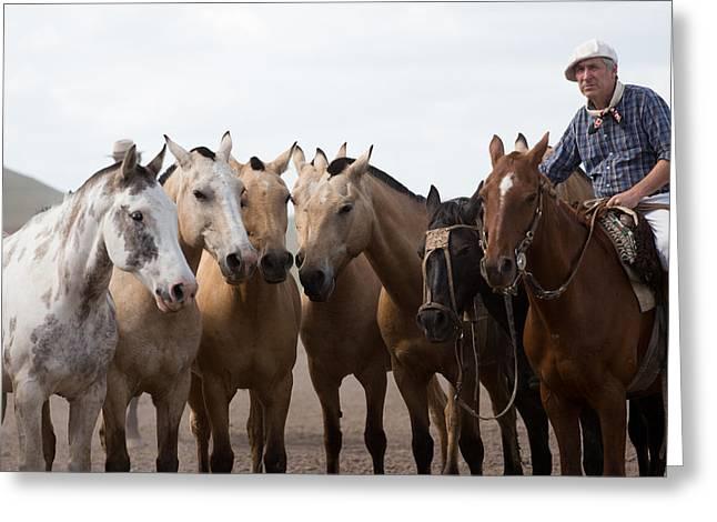 American Cowboy Artist Greeting Cards - Gaucho Huddle Greeting Card by John Daly