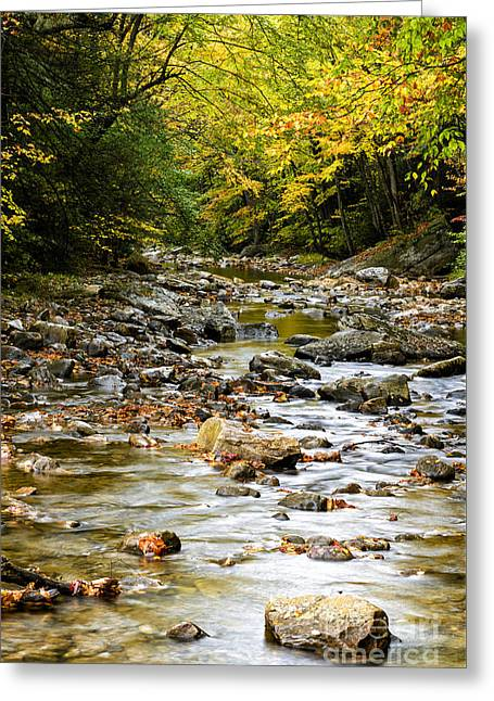 Late Fall Greeting Cards - Gauley River Headwaters Greeting Card by Thomas R Fletcher