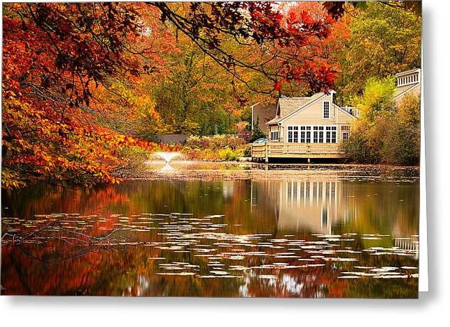 New England Autumn Greeting Cards - Gaze In Wonder Greeting Card by Lourry Legarde