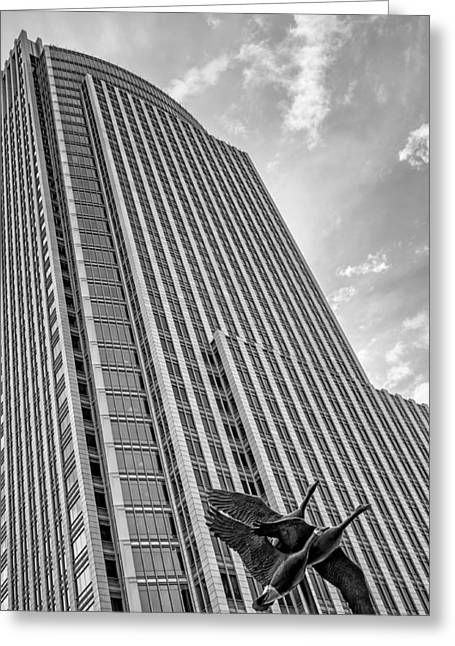 Stainless Steel Greeting Cards - Geese and Tower - Urban Sculpture and Skyscraper - Omaha Greeting Card by Nikolyn McDonald