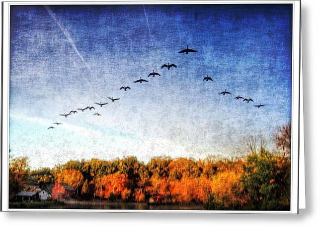 Haunted House Greeting Card Greeting Cards - geese flying over the Red Mill Greeting Card by Geraldine Scull