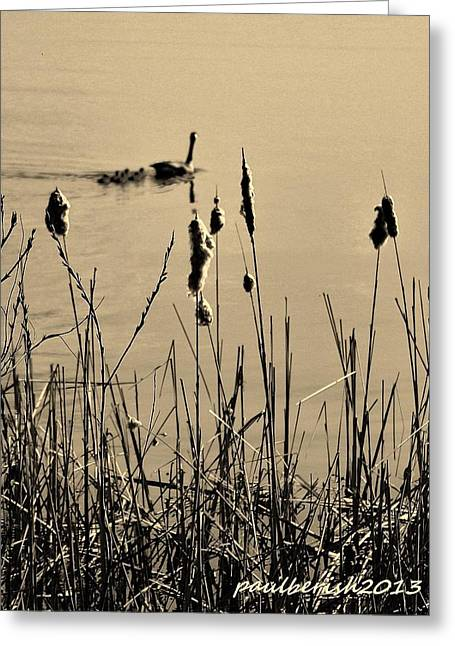 Agate Beach Greeting Cards - Geese I Greeting Card by Paul Berish