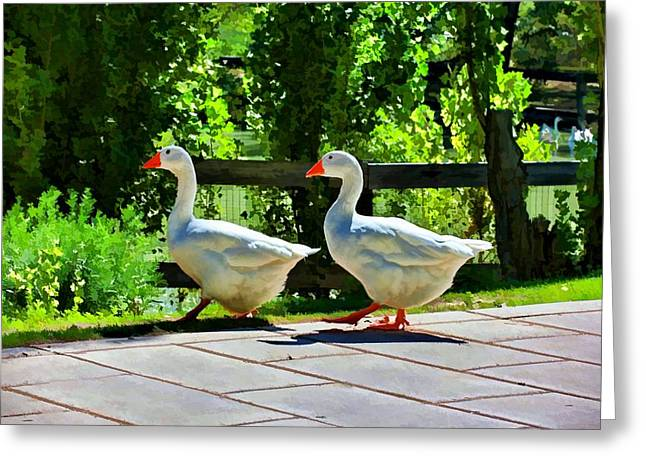 Geese Strolling In The Garden Greeting Card by Tracie Kaska