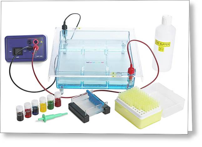 Gel Electrophoresis Equipment Greeting Card by Science Photo Library