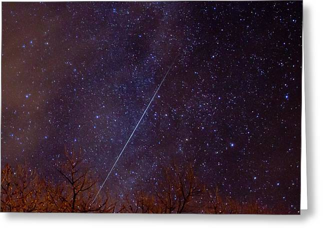 Geminids Greeting Cards - Geminid Greeting Card by Allen Lefever