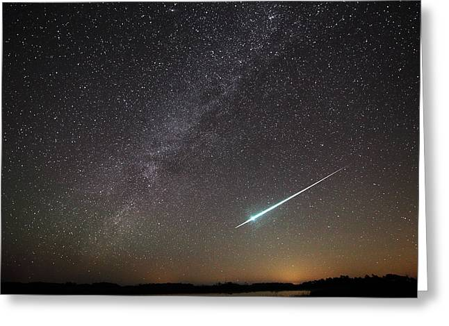 Geminids Greeting Cards - Geminid Meteor in Florida Greeting Card by Jean Clark