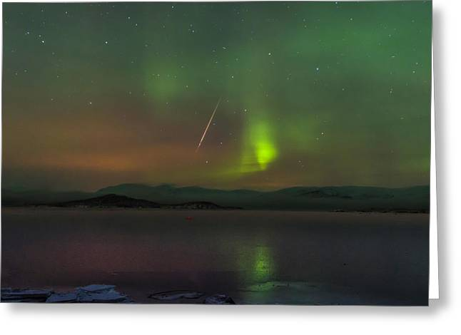 Geminids Greeting Cards - Geminids and the Northern Lights Over Sweden Greeting Card by David Williams