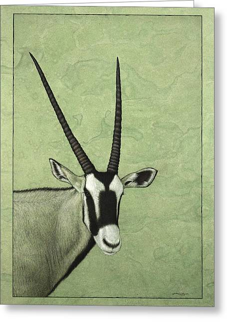 African Drawings Greeting Cards - Gemsbok Greeting Card by James W Johnson