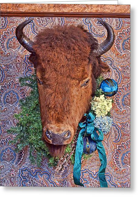 Fur Balls Greeting Cards - General Crooks Bison Greeting Card by Nikolyn McDonald