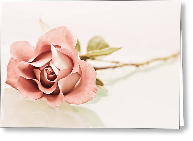Gentle Greeting Card by Elvira Pinkhas