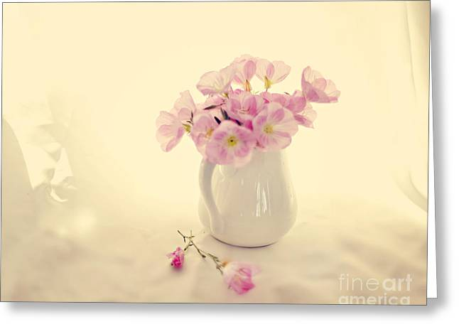 Gentle Light Greeting Card by Linde Townsend