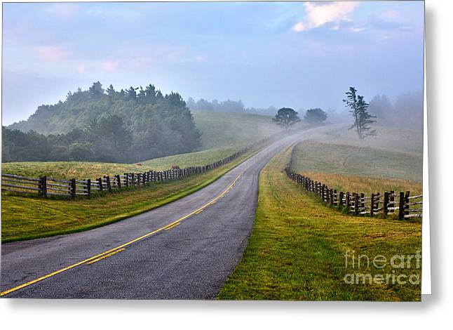 Cows Framed Prints Greeting Cards - Gentle Morning - Blue Ridge Parkway Greeting Card by Dan Carmichael