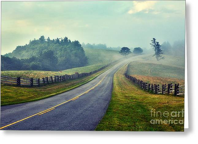 Cows Framed Prints Greeting Cards - Gentle Morning - Blue Ridge Parkway II Greeting Card by Dan Carmichael