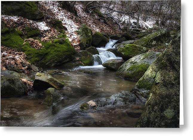 Beautiful Creek Greeting Cards - Gentle Mountain Stream Greeting Card by Steve Hurt