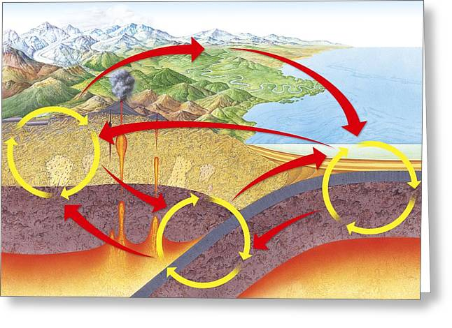 Metamorphism Greeting Cards - Geological rock cycle, diagram Greeting Card by Science Photo Library
