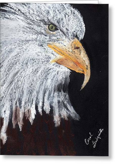 Bald Eagle Pastels Greeting Cards - Georges Eagle Greeting Card by Carol Lindquist