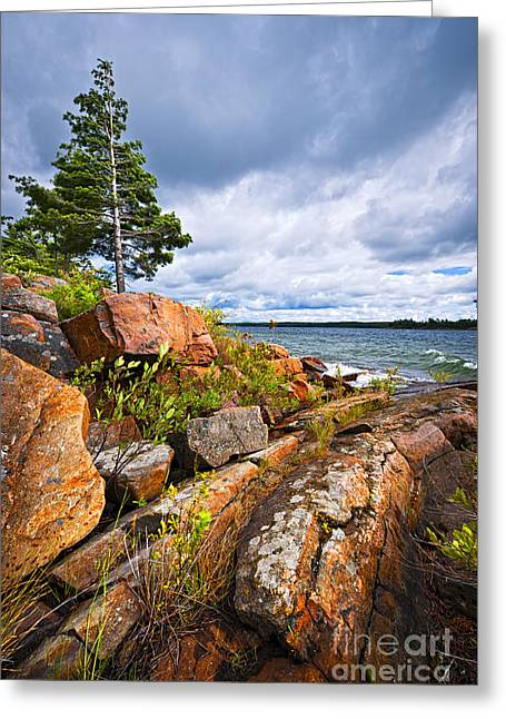 Huron Coast Greeting Cards - Georgian Bay Greeting Card by Elena Elisseeva