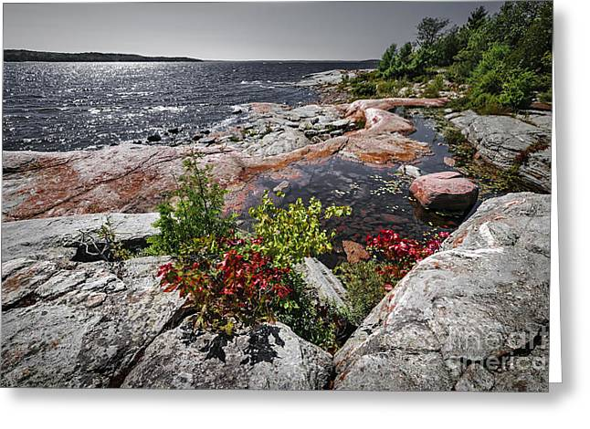 Georgian Bay Greeting Cards - Georgian Bay II Greeting Card by Elena Elisseeva