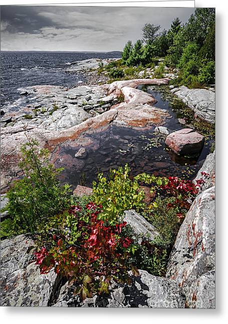 Huron Coast Greeting Cards - Georgian Bay III Greeting Card by Elena Elisseeva
