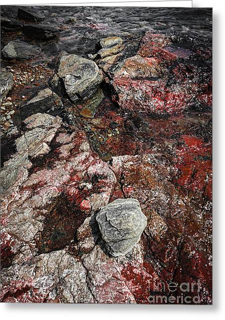 Submerged Greeting Cards - Georgian Bay rocks abstract II Greeting Card by Elena Elisseeva