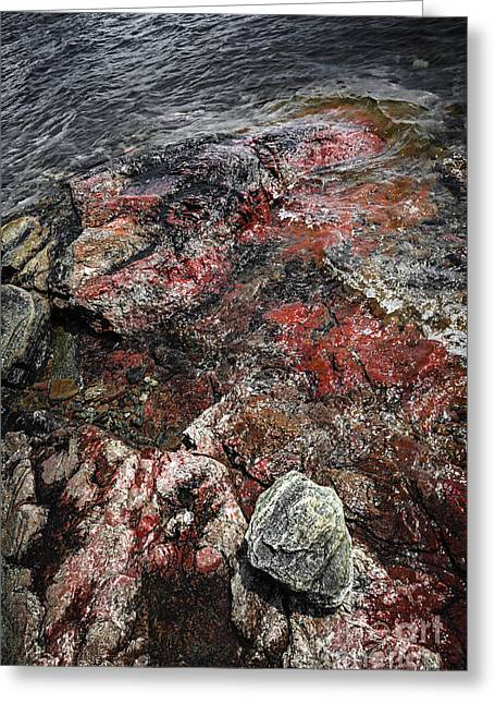 Huron Coast Greeting Cards - Georgian Bay rocks abstract III Greeting Card by Elena Elisseeva