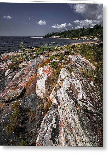 Georgian Bay Greeting Cards - Georgian Bay rocks Greeting Card by Elena Elisseeva