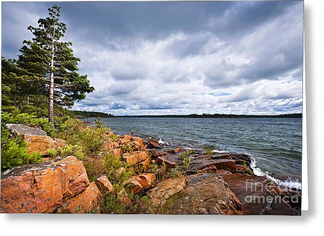 Huron Coast Greeting Cards - Georgian Bay shore Greeting Card by Elena Elisseeva